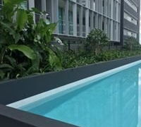 commercial-pool-planting